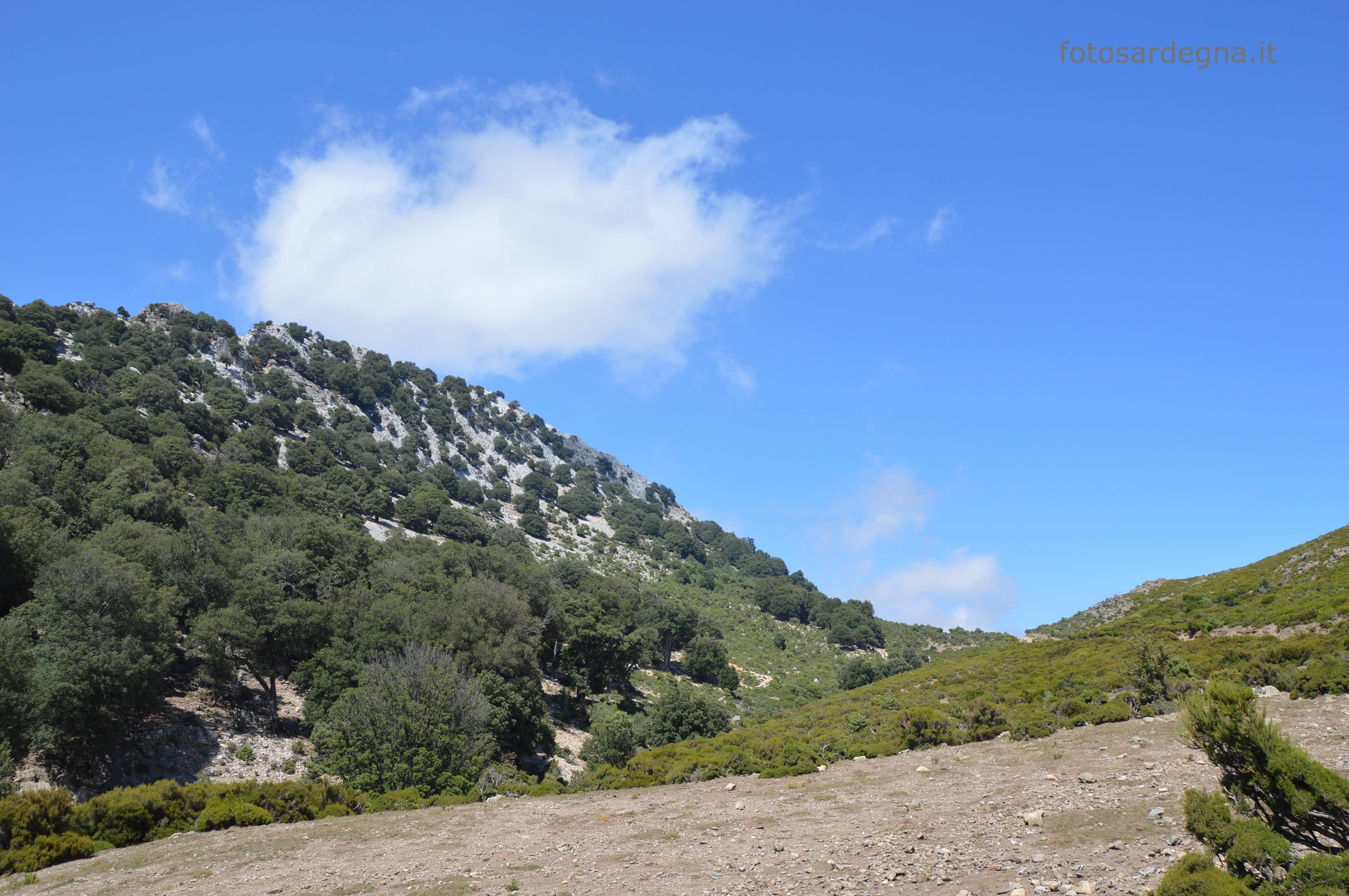 Punta Ispignadorgiu e sulla dx Genna Adaletzo.