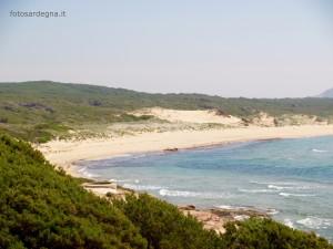 Dettaglio delle dune e della macchia mediterranea alle spalle.