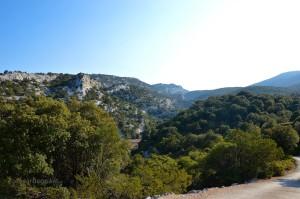 Località Cumbida Prantas, dove prendiamo la strada in discesa.