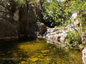 Piscina 'e Cerbu, una delle vasche più basse dove la natura rigogliosa circonda ogni cosa.