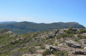 Il Montarbu con il Tacco del Tonneri ed il suo bastione più alto, Pizzu Margiani Pobusa (vedetta a 1.300 mt.).