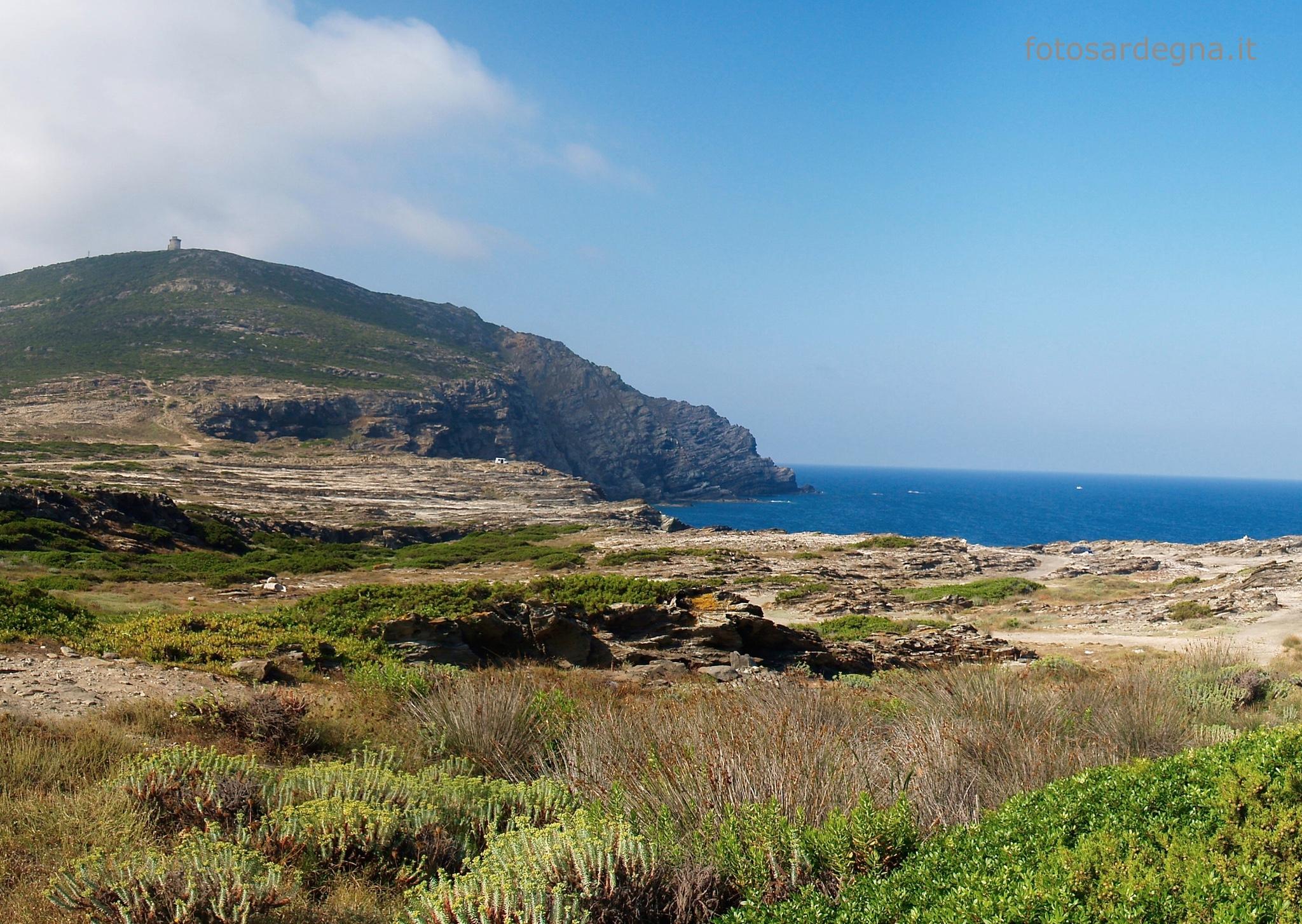 La Torre del Falcone domina da 190 mt sul mare tutto il Golfo dell'Aisinara e la costa a sud fino all'Argentiera, quindi anche gran parte della Nurra.