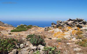 Rocce e vegetazione di Punta della Scomunica; la palette di colori è unica.