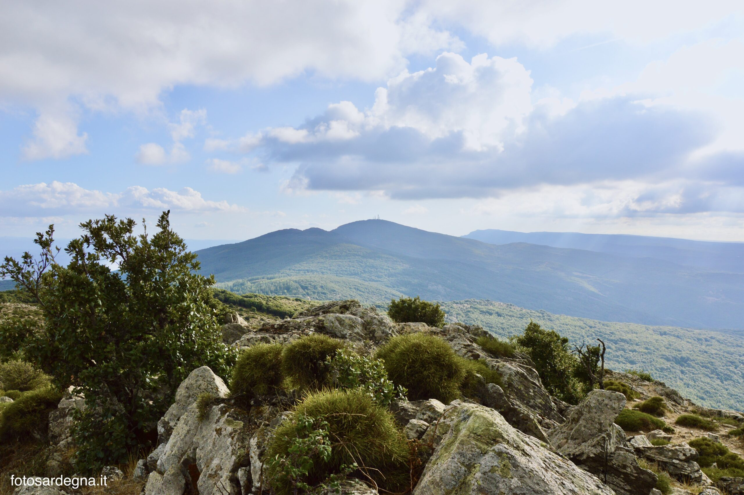 Punta Masiennera vs Monte Rasu