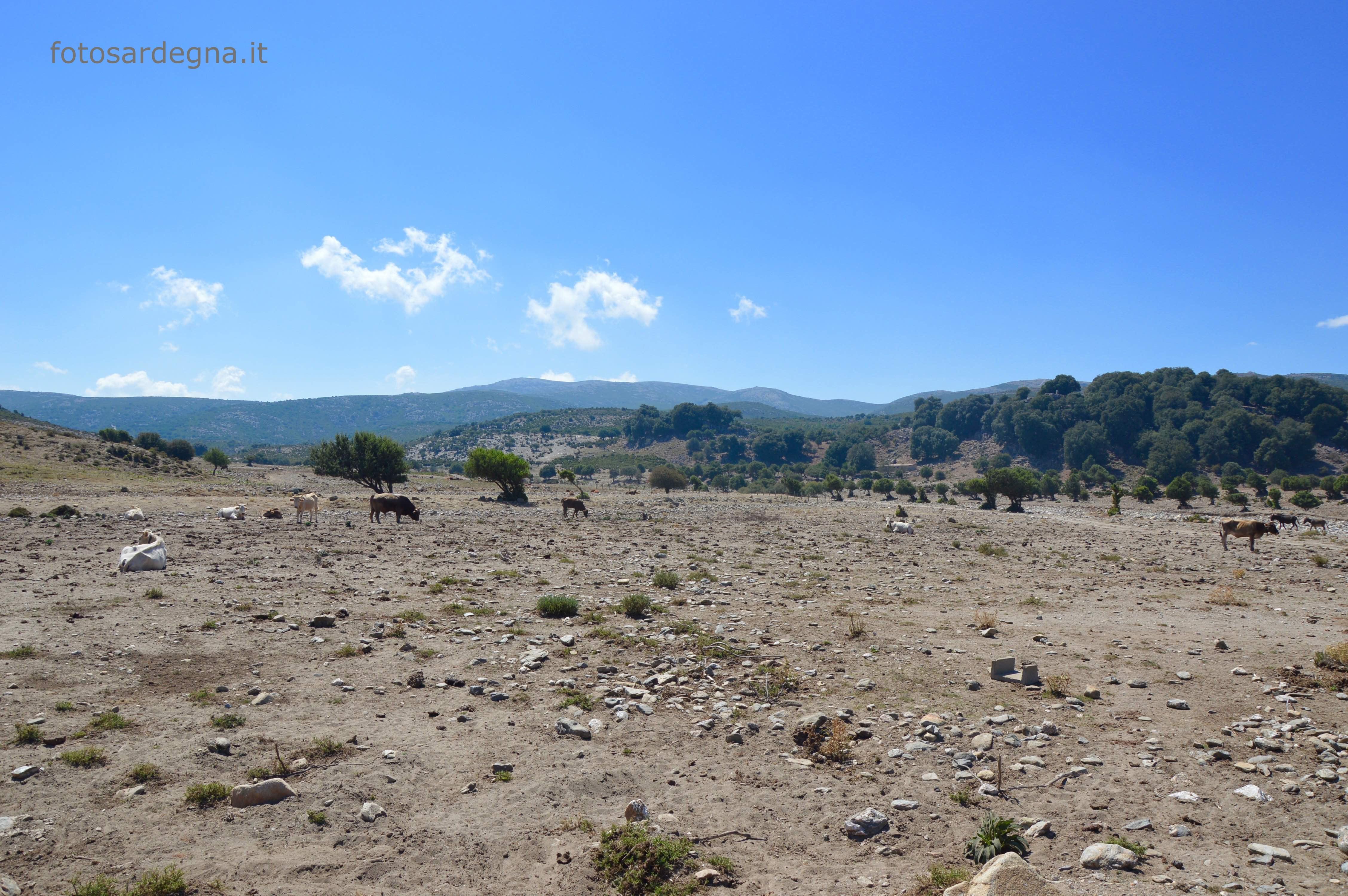Vista verso il Monte Genziana