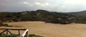 Panoramica dell'entroterra di Rena Maiore, con le dune e la pineta.