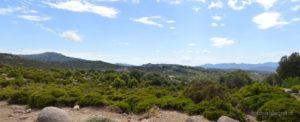 Sulla sinistra il Monte Olinie (1.370 mt.) e sullo sfondo a destra il lembo settentrionale dei Tacchi Ogliastrini dove spicca Perda Liana.