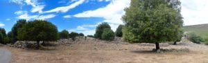 La radura prospiciente l'area archeologica di Su Nercone, raggiungibile con una breve deviazione dal nostro itinerario.