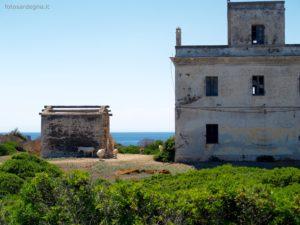 Edifici abbandonati a La Reale; gli asinelli albini sono quasi ovunque nell'Isola, qui a sinistra un'asinella in dolce attesa..
