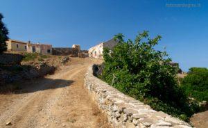 Gli edifici di Elighe Mannu, località dove è presente l'ultima macchia boschiva, a leccio, dell'Isola.